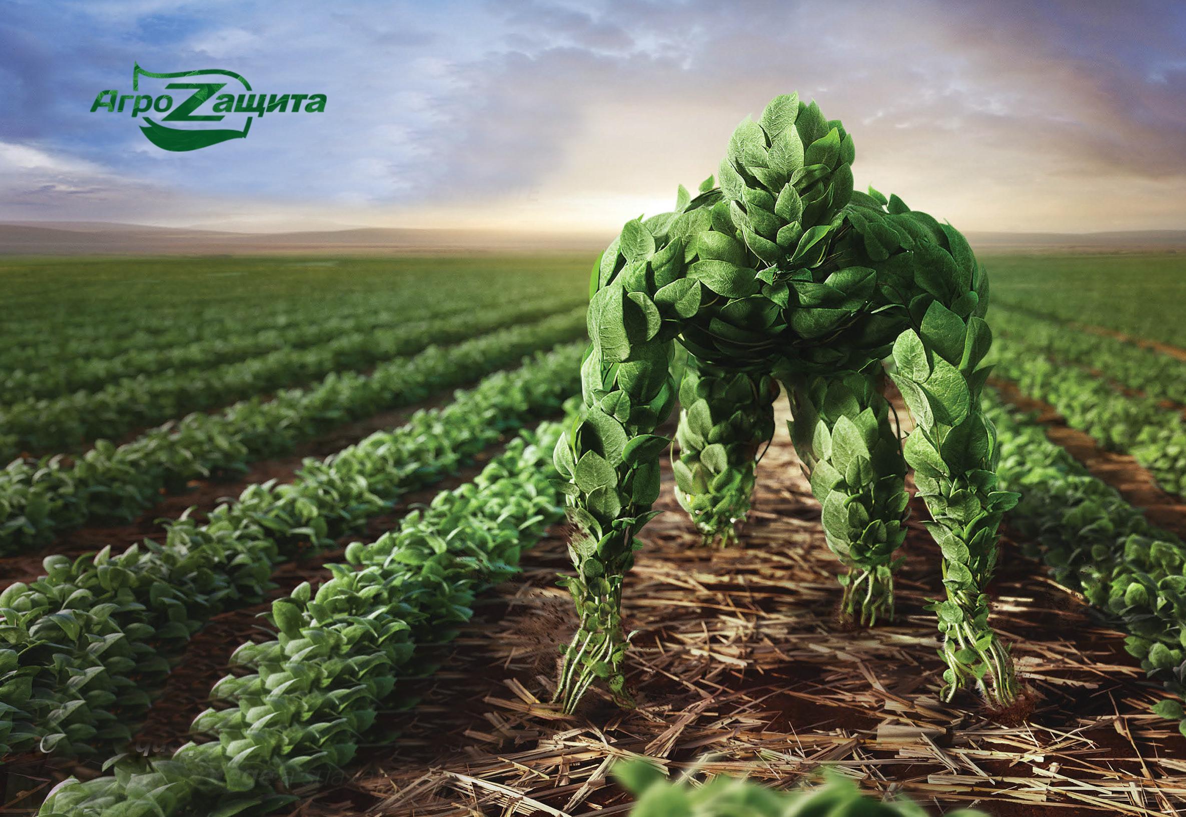 Применение биостимуляторов роста растений